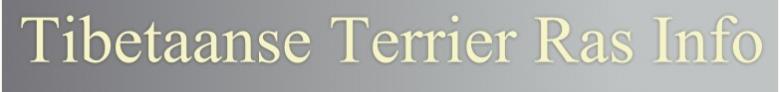Tibetaanse Terrier Ras informatie